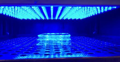 Celulas humanas incubadas con luces LED