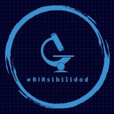 LOGO BIRSIBILIDAD